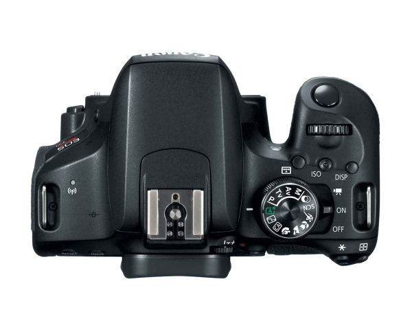 Canon EOS T7i 800D 0003