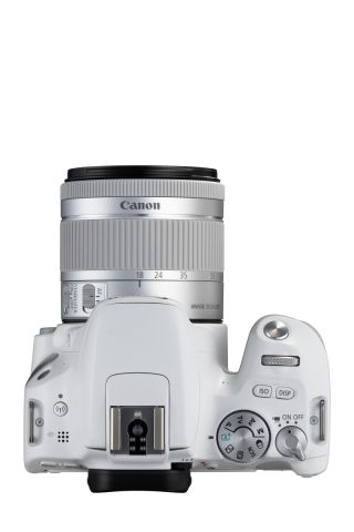 Canon EOS 200D 0013
