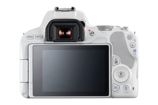 Canon EOS 200D 0017