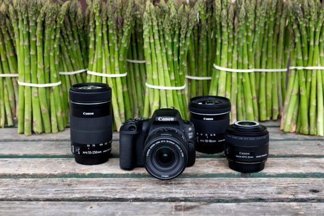 Canon EOS 200D 0022