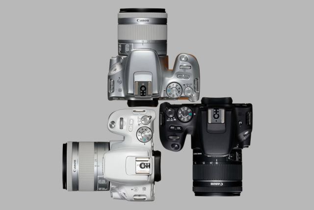 Canon EOS 200D 0024