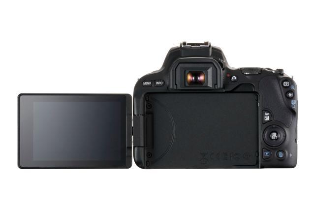 Canon EOS 200D 0005